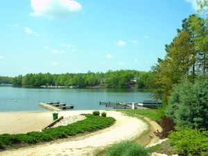 Solutions Market Report for Lake Monticello