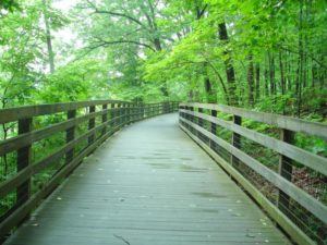Walking Trails in Charlottesville